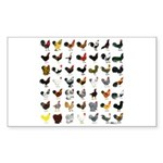 49 Roosters Sticker (Rectangle 10 pk)
