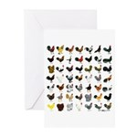 49 Roosters Greeting Cards (Pk of 10)