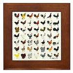 49 Roosters Framed Tile