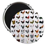 """49 Roosters 2.25"""" Magnet (100 pack)"""