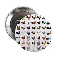 """49 Roosters 2.25"""" Button"""