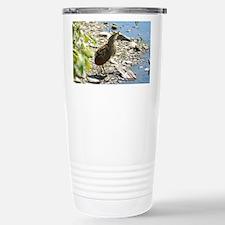 American Bittern Travel Mug