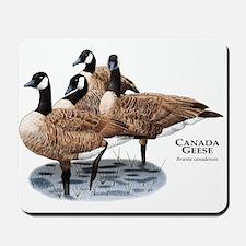 Canada Geese Mousepad