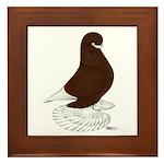 Tumbler Pigeon Bearded Framed Tile