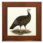 Turkey: Eastern Wild Hen Framed Tile