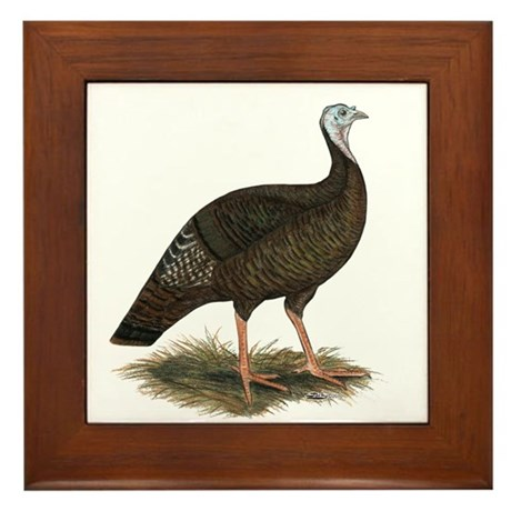 Turkey: Eastern Wild Hen Framed Tile