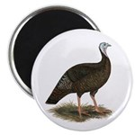 "Turkey: Eastern Wild Hen 2.25"" Magnet (100 pa"