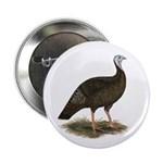 "Turkey: Eastern Wild Hen 2.25"" Button"