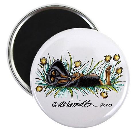 """Dandelion Dachshund Lover 2.25"""" Magnet (10 pack)"""