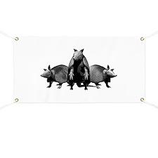 Armadillos Banner