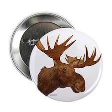 """moose head 2.25"""" Button"""