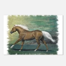 Palomino Stallion Postcards (Package of 8)