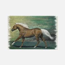 Palomino Stallion Rectangle Magnet