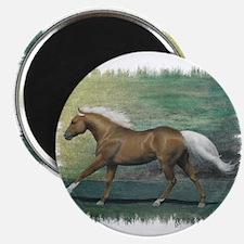 Palomino Stallion Magnet