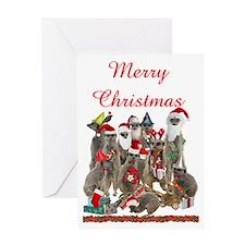 Xmas Meerkats Greeting Card