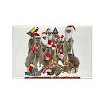Xmas Meerkats Rectangle Magnet (100 pack)