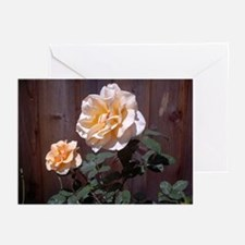 Peach Roses Greeting Cards (Pk of 10)