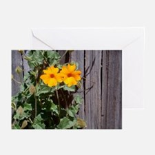 Climbing the Fence Greeting Cards (Pk of 10)