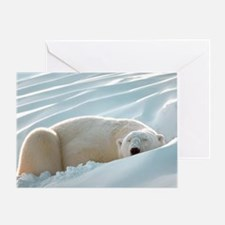 Sleeping Polar Bear Greeting Card