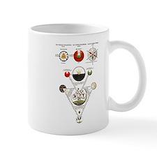 Alchemy Mug
