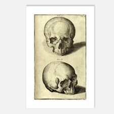 Momento Mori Postcards (package Of 8)
