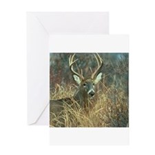 deer1001 Greeting Cards