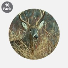 """Cute Deer 3.5"""" Button (10 pack)"""