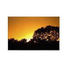 Sunset Magnet (10 pack)