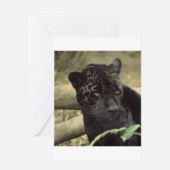 Cool Wild will Greeting Card