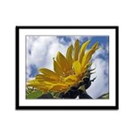 Sunflowers and Sky Framed Panel Print