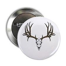 """European mount mule deer 2.25"""" Button"""