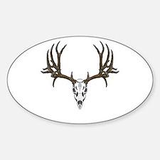 European mount mule deer Sticker (Oval)