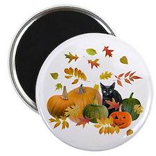 Black Cat Pumpkins Magnet