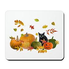 Black Cat Pumpkins Mousepad