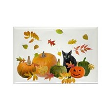 Black Cat Pumpkins Rectangle Magnet