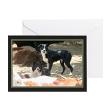 Dogs/Cows Greeting Card