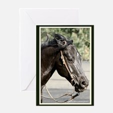 Black Horse Head Greeting Card