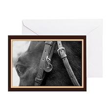 Bridled English Horse Greeting Card