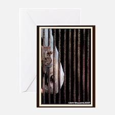 Horse Behind Bars Greeting Card