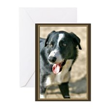 Border Collie Dog Greeting Cards (Pk of 20)