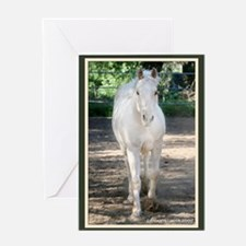 Curious Horse Greeting Card