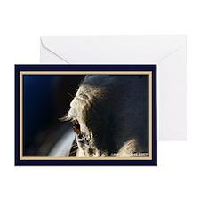 Moody Horse's Eye Greeting Card