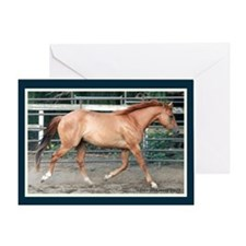 Red Dun Pony Greeting Card