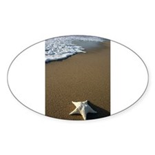 STARFISH ON THE BEACH Decal