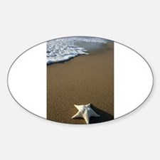 STARFISH ON THE BEACH Sticker (Oval)