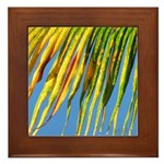 PALM FRONDS Framed Tile