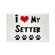Setter Rectangle Magnet (10 pack)