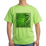 AUDUBON Green T-Shirt