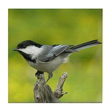 Bird Photo Tile Coaster