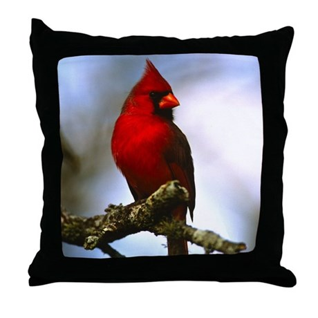 Cardinal Bird Throw Pillows : Cardinal Bird Photo Throw Pillow by PegasusDesigns